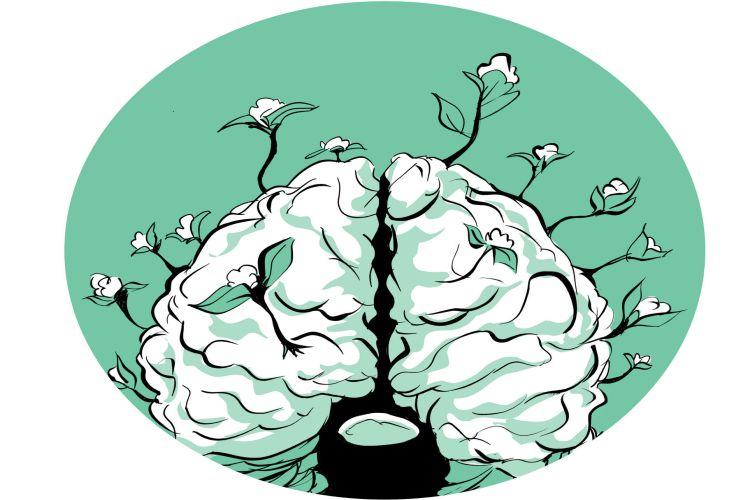 9 روش موفق برای افزایش قدرت مغز