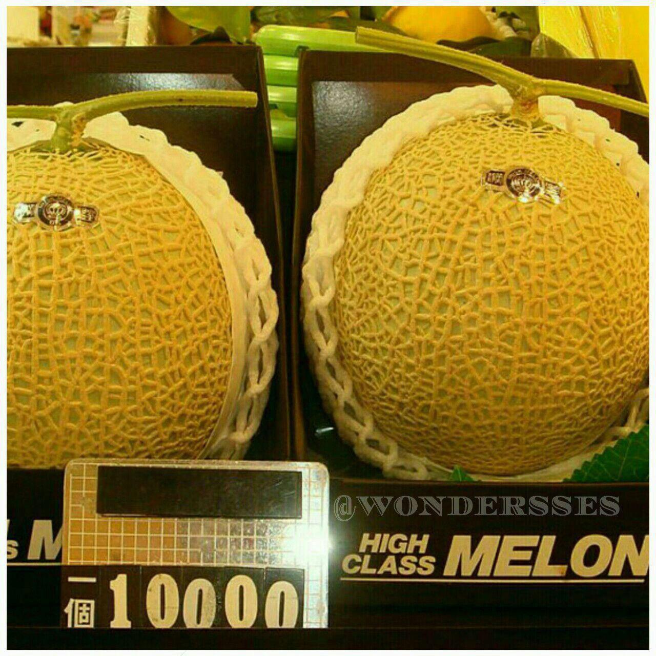 یوباری میوه ای با قیمت باورنکردنی