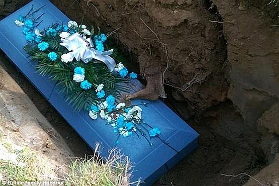 بیرون آمدن پای جنازه از درون قبر