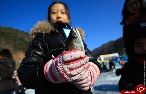 محبوب ترین جشنواره زمستانی در کره