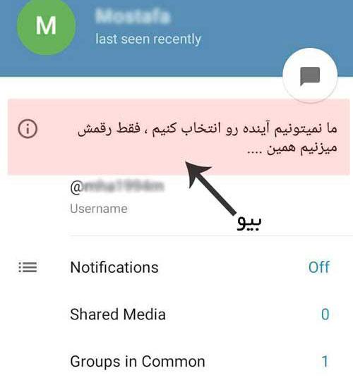متن برای بیو تلگرام,متن بیوگرافی تلگرام,متن زیبا برای بیوگرافی تلگرام