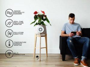 گلدانی شگفت انگیز که سموم خانه را کاهش میدهد
