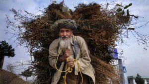سالمندان عزیز کجای دنیا بروند کجای دنیا نروند