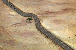 یک راه حل برای حفظ محیط زیست از طریق مردم عادی