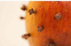 با یک سیب و چند میخک مگس ها را از خود دور کنید