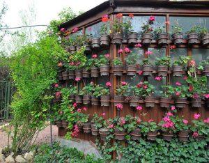 باغ گل های اصفهان ؛ کلکسیونی از گل های بهشتی