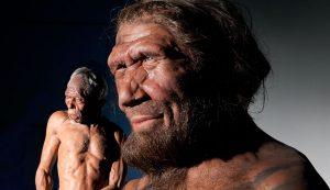 اطلاعاتی درباره بدن انسان که هرگز باور نمیکنید
