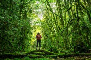 20 نکته مهم که حتما باید در سفر رعایت شوند