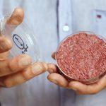 گوشت مصنوعی,گوشت مصنوعی در ایران,ماجرای گوشت مصنوعی